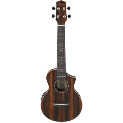 Ibanez UEW13MEE Acoustic-Electric Ukulele - Dark Brown Open Pore for sale