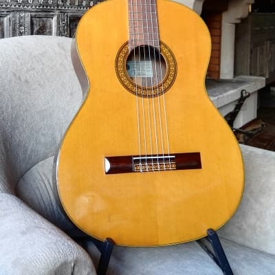 Epiphone 6514 Classical aka EC-30  early 70's for sale