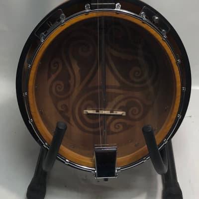 Luna Celtic 5-string banjo for sale