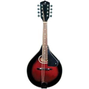 J. Reynolds JRMAN20 A-Style Spruce Top Mandolin