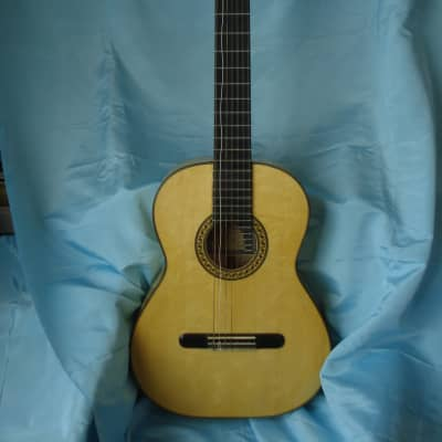 Gary Demos 7 String Acoustic Guitar w/Hard Case for sale