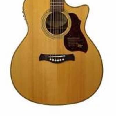 richwood g-65-ce va chitarra acustica grand ... for sale
