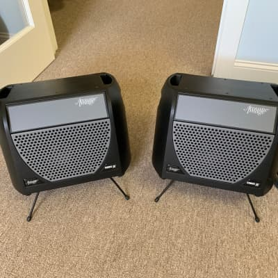 Acoustic Image Corus EX Cabinets/Speakers, Set of 2 2010s Black/Grey for sale