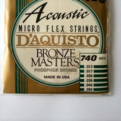 D'Aquisto Acoustic Bronze Masters 740M