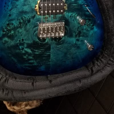 Kiesel  Aries  2018 Blue Burl Top