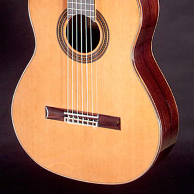 New World Player Ported Elevated Model 640mm Guitar with Cedar Top and Hard Case for sale