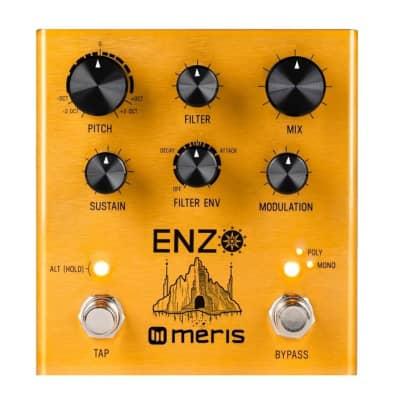 Meris Enzo Multi-Voice Instrument Synthesizer