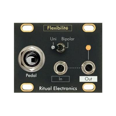 Ritual Electronics Flexibilité - 1U