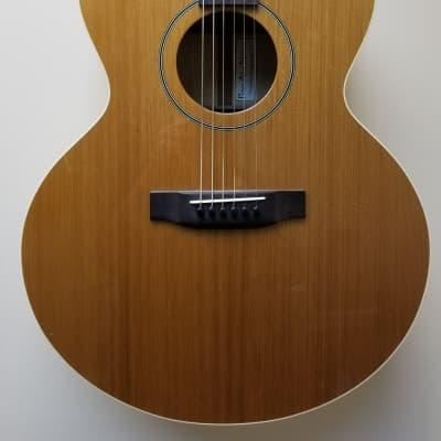 Nelson Custom Acoustic for sale