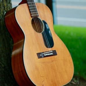 Harmony H-162 Naural
