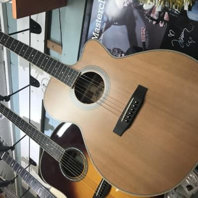 BSG GA10CF SOLID Cedar Magnificent Mahogany Ebony FB Cutaway for sale