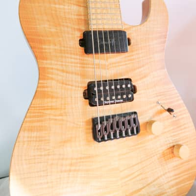Raines Hand Built Custom Chris Forshage Austin Raines 7-String Telecaster Prototype with  2015 Flame for sale