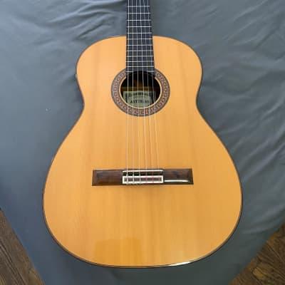 Asturias A10 1982 ( signed by Wataru Tsuji) Classical guitar for sale