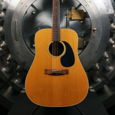 Dorado Model 5990 Acoustic Guitar for sale
