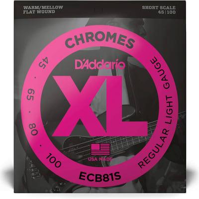 D'Addario ECB81S Chromes Bass Guitar Strings Light 45-100 Short Scale