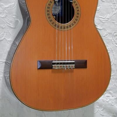 Cervantes Concert Rodriguez / Cedar Top / Indian rosewood for sale