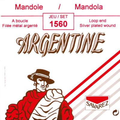 Savarez 1560 Set 8 Corde Loop End Mandola