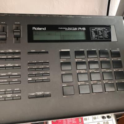 Roland R-8 Human Rhythm Composer Drum Machine