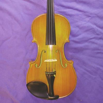 Professional Violin signed by Vasile Gliga, 1998