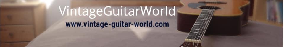 Vintage-Guitar-World