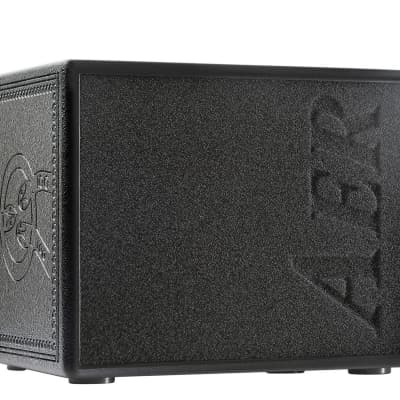AER Compact 60 Tommy Emmanuel 60W 1x8 Acoustic Combo