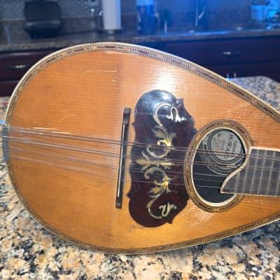 Eugene Howard bowl back mandolin 1920s Mandolin