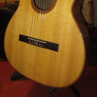 Vintage 1971 Giannini Classical Acoustic Natural for sale