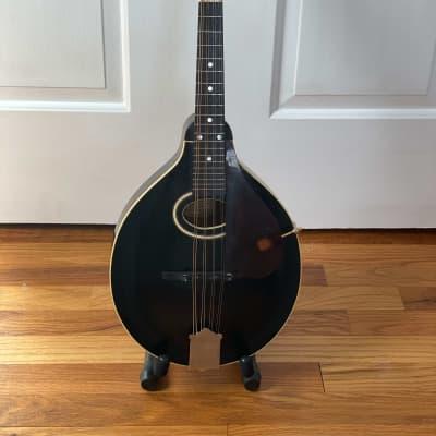 Gibson A Model 1928 Blackface