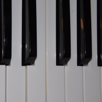 """M-Audio Venom """"G"""" KEY (s)"""