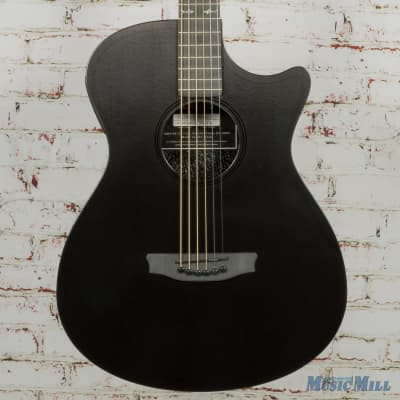 RainSong Concert Hybrid Series CH-OM Acoustic-Electric Guitar with L.R. Baggs Stagepro Element Electronics Pinstripe Rosette for sale