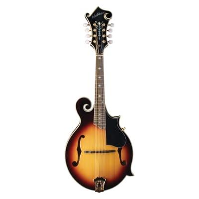 Washburn M3SWK Bluegrass F-Style Mandolin