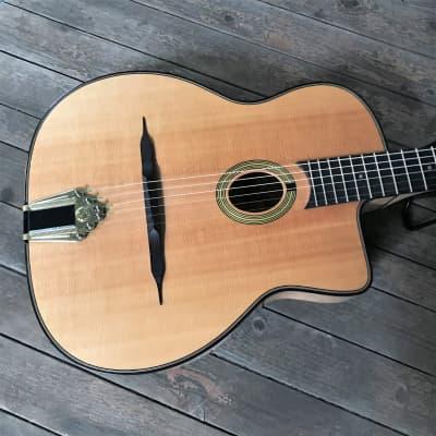 Gitane DG-250M 2019 for sale