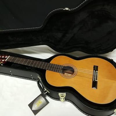 Aria A-30S classical acoustic Guitar - Nylon Strings - with Hard Case for sale