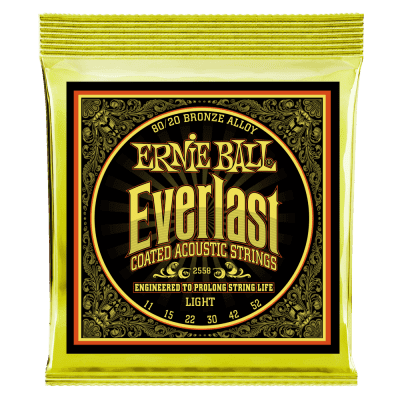 Ernie Ball 2558 Everlast 80/20 Bronze Light Coated Acoustic Guitar Strings (11-52)