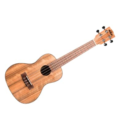 Pacific Walnut Concert Kala for sale