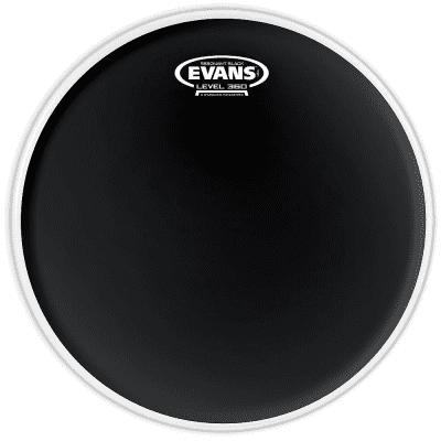 "Evans TT08RBG Resonant Black Drum Head - 8"""