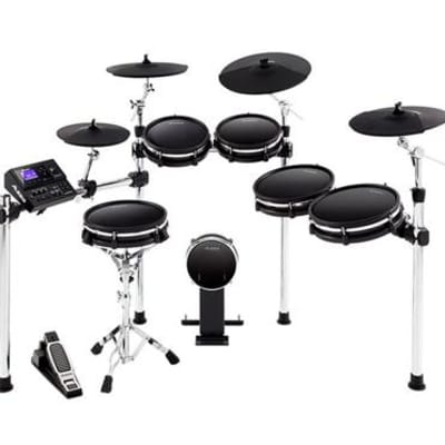 Alesis DM10 MKII Pro Electric Drum Set (Used/Mint)