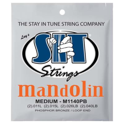 SIT Strings M1140PB Medium Mandolin Phosphor Bronze Strings