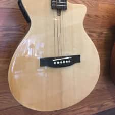 Johnson JG-50-NA Thinline Acoustic