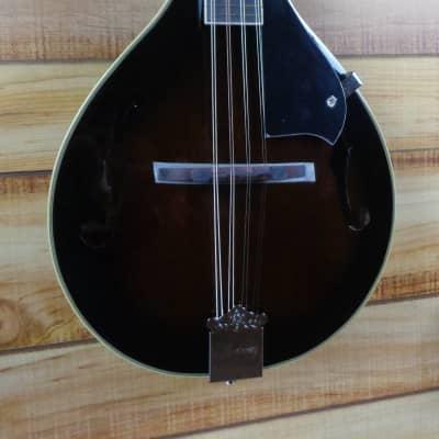 New Ibanez M510 A Style Acoustic Mandolin Dark Violin Sunburst High Gloss for sale