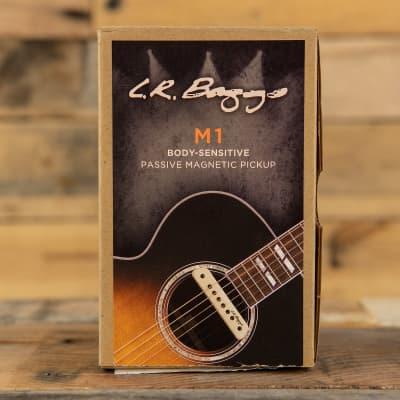 LR Baggs M1 Passive Soundhole Pickup