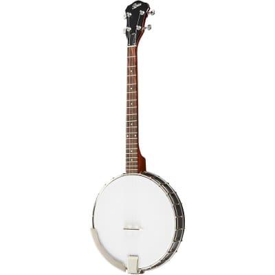Rover RB-20T Student 4-String Tenor Banjo