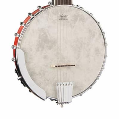 Washburn Americana B6 6-String Banjo Natural for sale