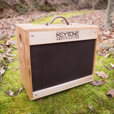 2019 Keytone Amplification The Ascent for sale