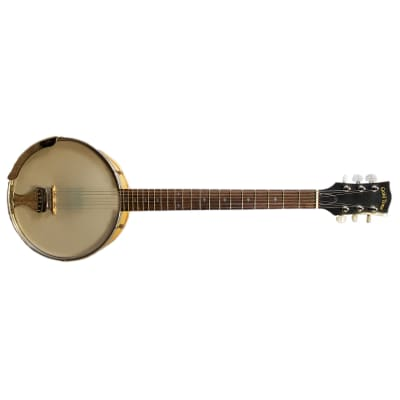 GOLD TONE BT-1000 6 STRING BANJO PROJECT for sale