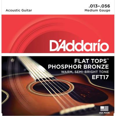 D'addario Phosphor Bronze Flat Top EFT17