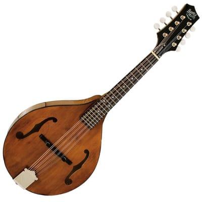 Barnes & Mullins Wimborne Bm600 Mandolin (RRP £299) DPS for sale