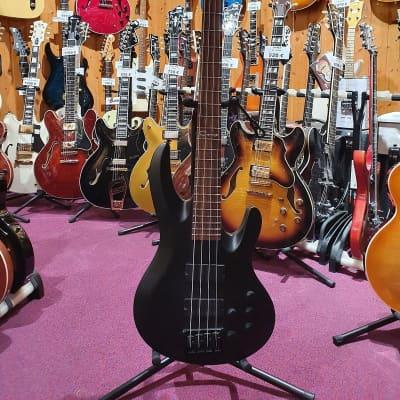 Caraya Bass for sale