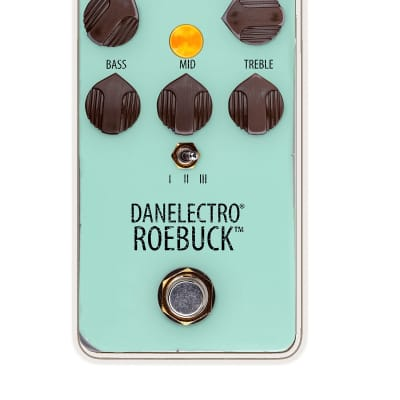 Danelectro Roebuck for sale