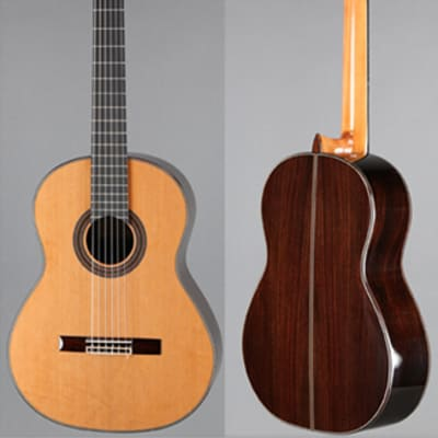 New World Player Model 640mm Guitar with Ported Sound Hole Upgrade, Cedar Top and Hard Case for sale